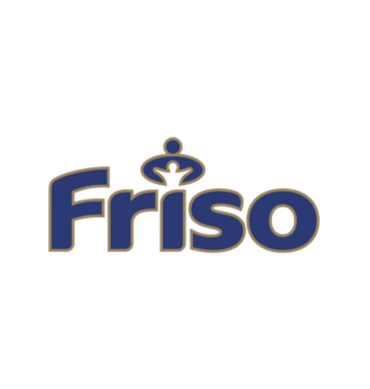 Компания Friesland